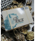 3 PACK BOXES OF 6 oysters PERLES DE VALENCIA